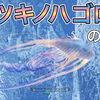 【MHWI】レア生物・ツキノハゴロモの出現場所と捕獲方法!