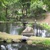 015景 盛岡城跡公園?否、岩手公園でしょ。
