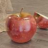 リンゴのモデリング ~その11:水滴~【Blender #510】