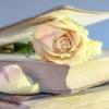 【本を捨てよう】過去必要だった知識に取り憑かれない