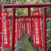 小淘綾之池(神奈川県大磯)