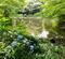 血洗いの池(東京都豊島)