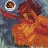 Jimi Hendrix - The Jimi Hendrix Concerts:炎のライヴ'68~'70 -