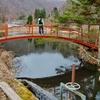 夜の池(長野県長和)