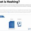 【Lisk Academy 和訳】Hash関数、暗号化って何?