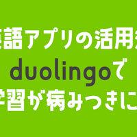 言語学習アプリ「duolingo」で英語学習が病みつきに!