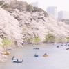 千鳥ヶ淵の桜をルミックスDMC-GM1で撮影♪