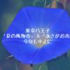 東京八王子『夏の風物市』&『あさがお市』今年も中止になってしまいました