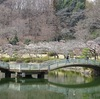 日曜日の朝の薬師池公園Photo