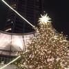 降誕祭の飾り木