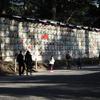 3月中旬:明治神宮内をお写んぽ。その3 樽編