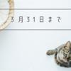 【3/31まで!】ASSECLI(アセクリ)に新規登録でAmazonギフト券1,000円分プレゼント!