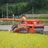 三連休の最終日、台風が向かって来ている中で稲刈り中😸