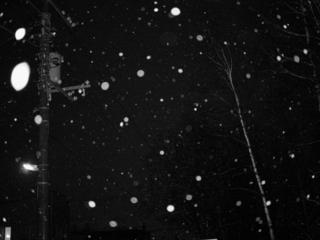 雪降る季節をフラッシュで
