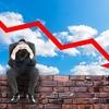 新興国株式下落で悪夢を見る