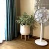 【オシャレ家電】バルミューダの扇風機 The GreenFan が 素敵すぎる!