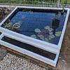 庭に池をつくる(⑥池周りの仕上げ その3)