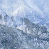 京都・京北 - 厳冬期の栗尾峠