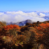 久住連山の紅葉は今が見ごろ 今日は雲海も広がっていた