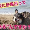 【大阪に砂風呂?】砂風呂ならぬ…酵素風呂で埋もれちゃおう!