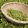 週末ライフ。「初夏を迎えて花が香りをまくように季節も香りを伴って、新茶の芳香は朝のひとときを豊かにもする自然の恵み」の巻。