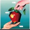V.A. - 椎名林檎トリビュートアルバム アダムとイヴの林檎