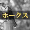 【ソフトバンク】補強ポイントをチェック!【2020-21】