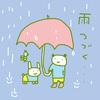 雨つづく。。