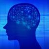 脳と情報機器を接続する「ブレイン・マシン・インタフェース(BMI)」の状況