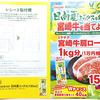 KAGOME|日向夏ミックスを飲んで宮崎牛を当てよう!