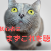 yonige(ヨニゲ)初心者はこれを聴け!おすすめ人気定番7曲を紹介【陰キャ向けバンド】