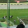6.20  札幌競馬 注目馬