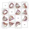 フェノタイプの整理メモ 15 確率的に考える10