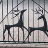街の中の動物たち