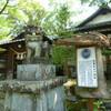 1円玉にデザインされている木!@熊本県人吉市