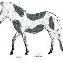 Cows-Net