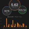 【3月15日ラン】 繋ぎジョグ ~初フルまであと4日~
