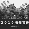 【競馬】2019天皇賞春の結果と振り返り