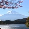 富士五湖周辺で紅葉が見頃を迎えています☆