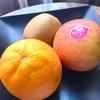 研修前日の学び/オレンジ、りんご、キウイ