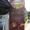 オートーコー市場 Or Tor Kor Market - 有機農業市場