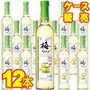 梅ワイン 楽天最安値に挑戦中!12本入り 【送料無料】梅ワイン 720ml×12本セット