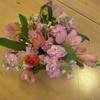 花とあそぼう