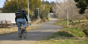 茨城県をロードバイクでゆるポタリング「いちご狩り」&「夕焼け筑波山」を楽しもう!