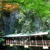日本一周12・13日目 秋芳洞とカルストロード