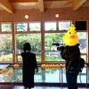 今日は新潟TVさんに取材に来ていただいたので、特別アヒル風呂!