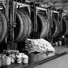 牛革の製造工程について