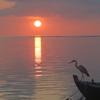 【モルディブ滞在記】マーフシ島の海だって凄い!朝日も別格に素敵でした