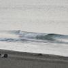 フィンレスで小波サーフィンの限界に挑む@茅ヶ崎