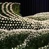 「家族葬と年賀状じまいの厄介」~縁切りの作法について